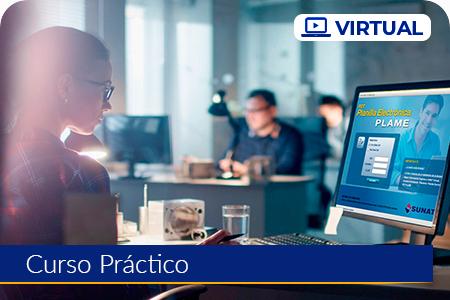 Planilla Electrónica, T-Registro y PLAME - Virtual